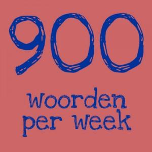 900 woorden per week laaggeletterden